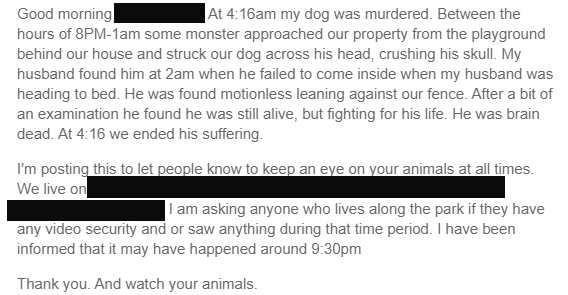 post describes a violent act resulting in death of family dog